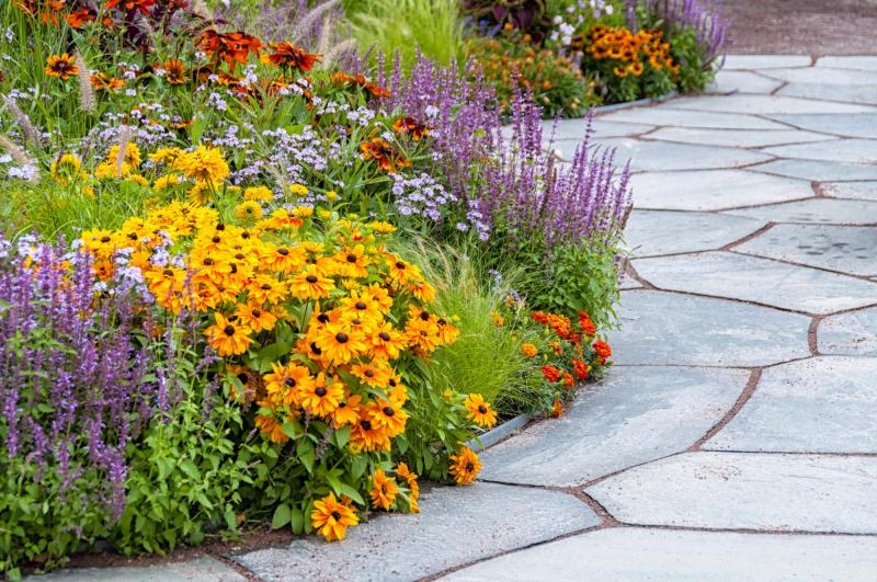 colorful flowers in a flower bed along a stone patio