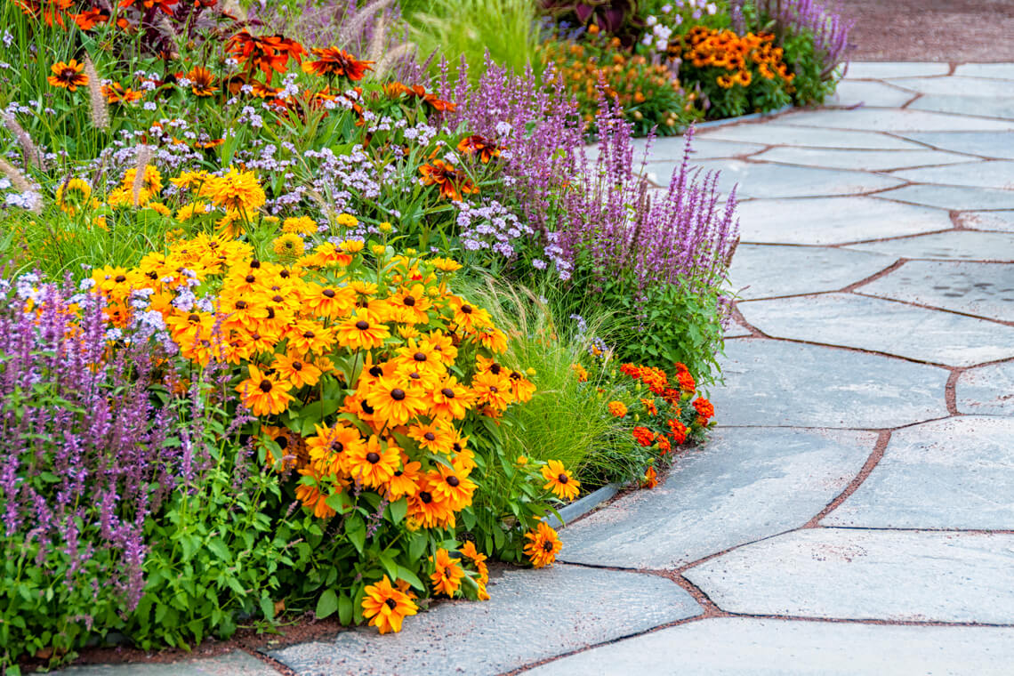 bright flower bed along a patio