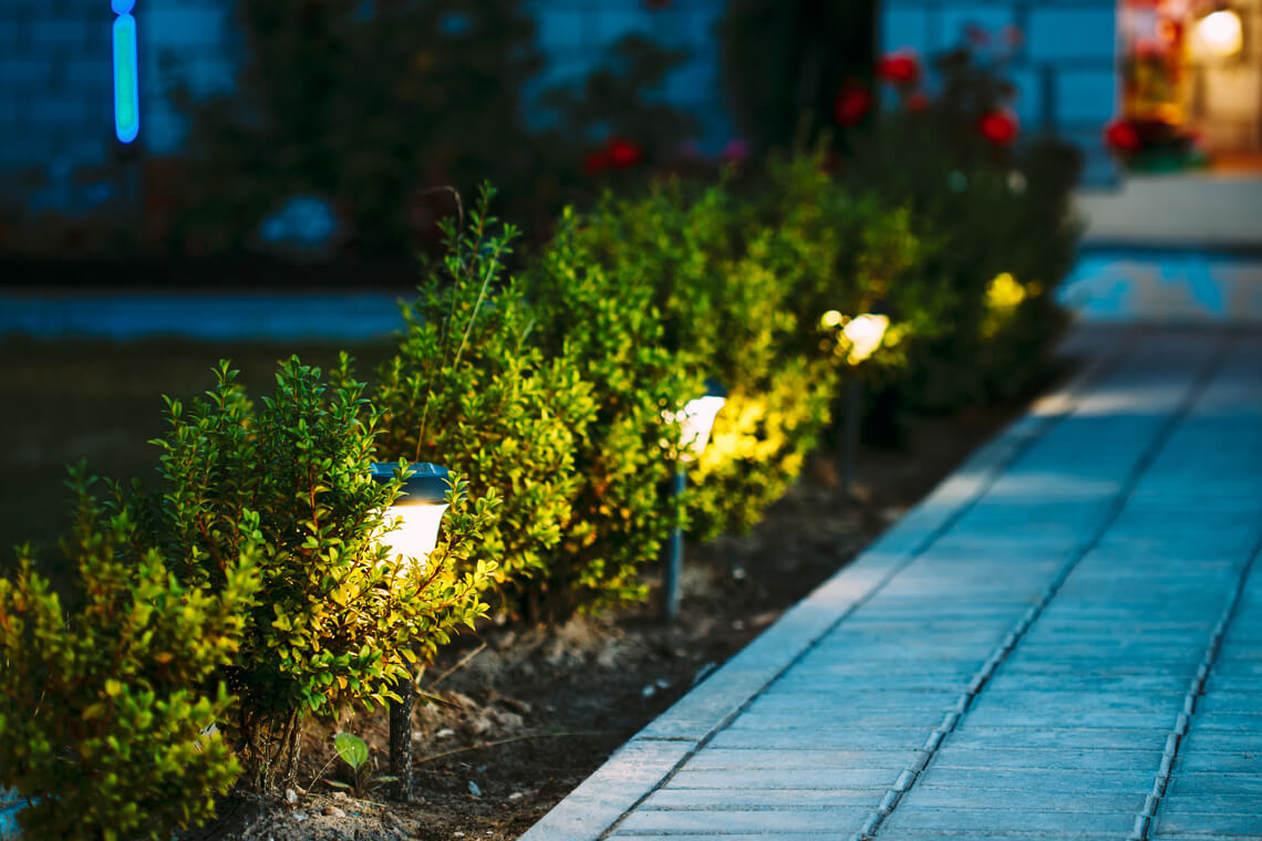lighting along a walkway in the bushes