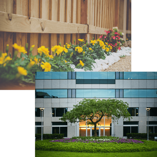 flowers along a fence and also in front of a commercial building