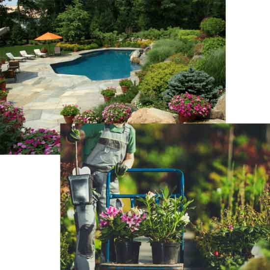 dual image of pool and landscaping