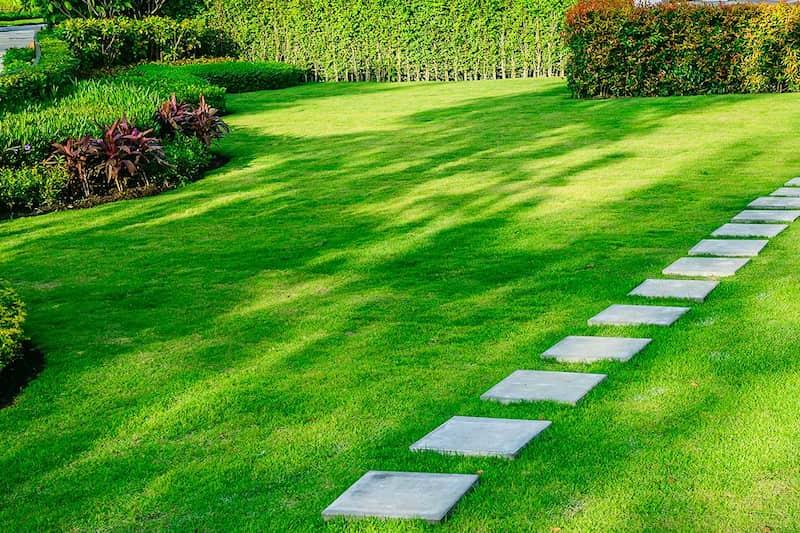 pennsylvania backyard lawn care