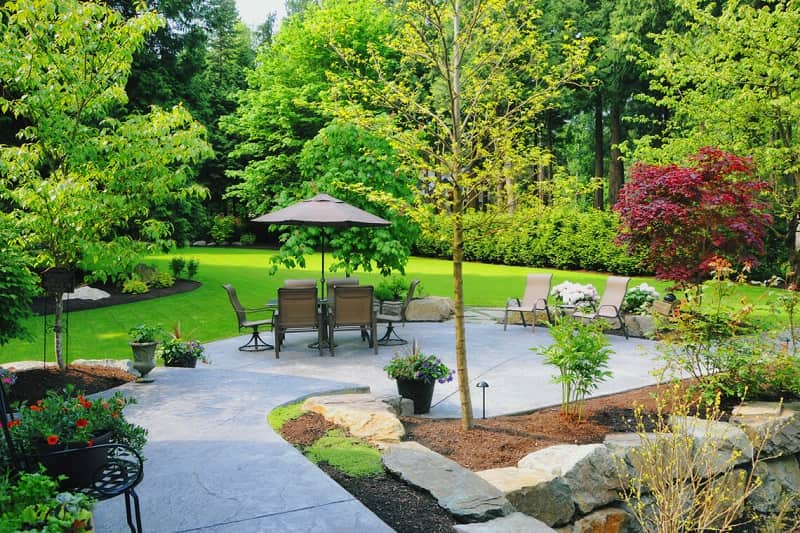 residential landscape image with patio and plants