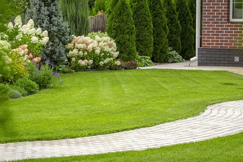 south jersey residential lawn care